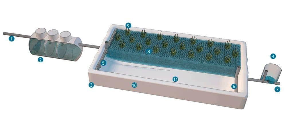 Esquema Fitodepuración con material plástico