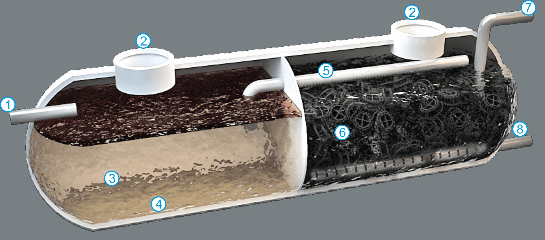 Esquema de un filtro biológico
