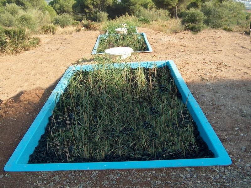 Fitodepuracion de flujo sumergido horizontal con material plástico. 1